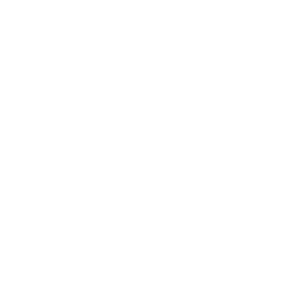 Bozeman Film Celebration Logo